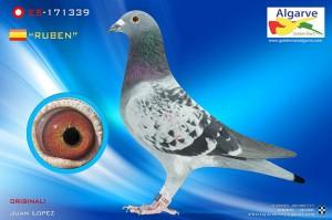 -algarve-Ruben-171339-13