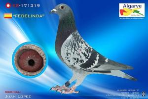 Fidelinda-ES-171319